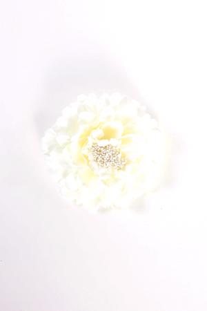 corsage-064